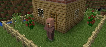 Villager Agent Add-on
