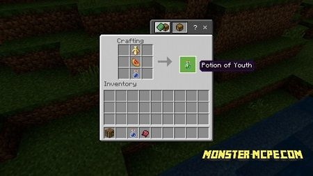 Potions of Youth Addon 1.13/1.12+