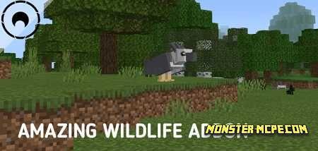 Amazing Wildlife Add-on 1.16/1.15+