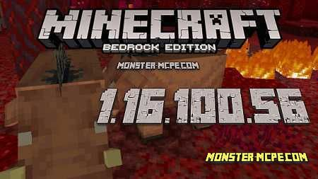 Minecraft PE 1.16.100.56 for Android