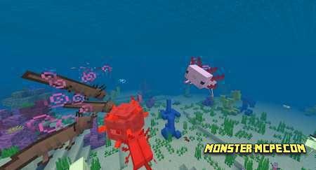 Axolotls (1)