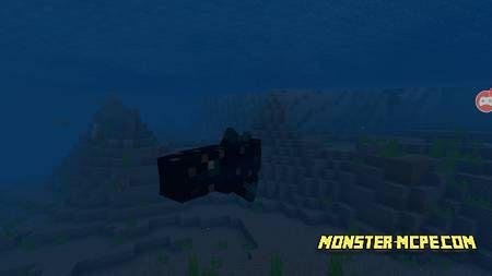 Coelacanth (1)