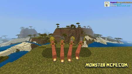 Acacia broomstic (1)