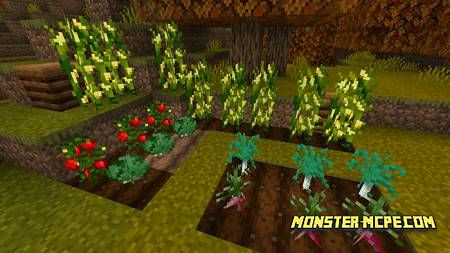 Floral Crops Resource Pack