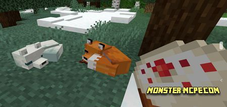 Tameable Foxes Add-on
