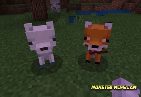 Tameable Foxes (3)