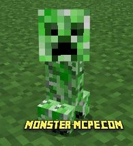 Little baby Creeper