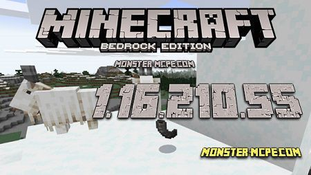 Minecraft PE 1.16.210.55 for Android