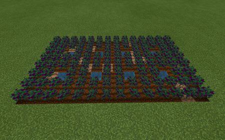 Rustic Agriculture (4)