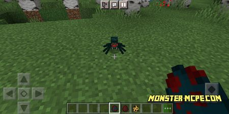 spiders (2)