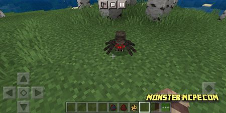spiders (1)