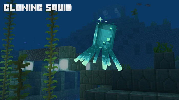 the Glowing Squid