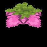 Spore Blossom
