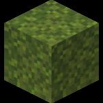 moss blocks
