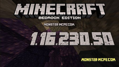 Minecraft PE 1.16.230.50 for Android