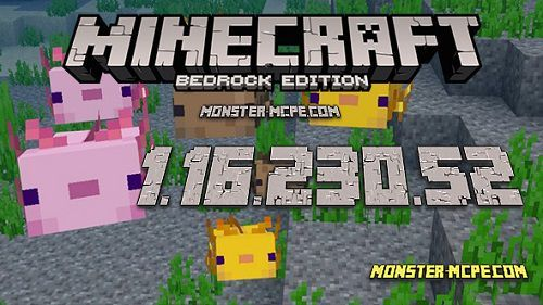Minecraft PE 1.16.230.52 for Android