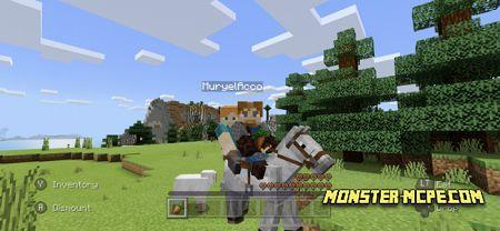 2 Person Horse Riding (3)