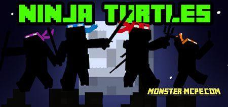 Teenage Mutant Ninja Turtles Add-on