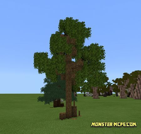Bushy Leaves (2)