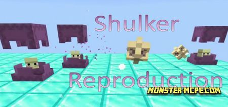 Shulker Reproduction Add-on